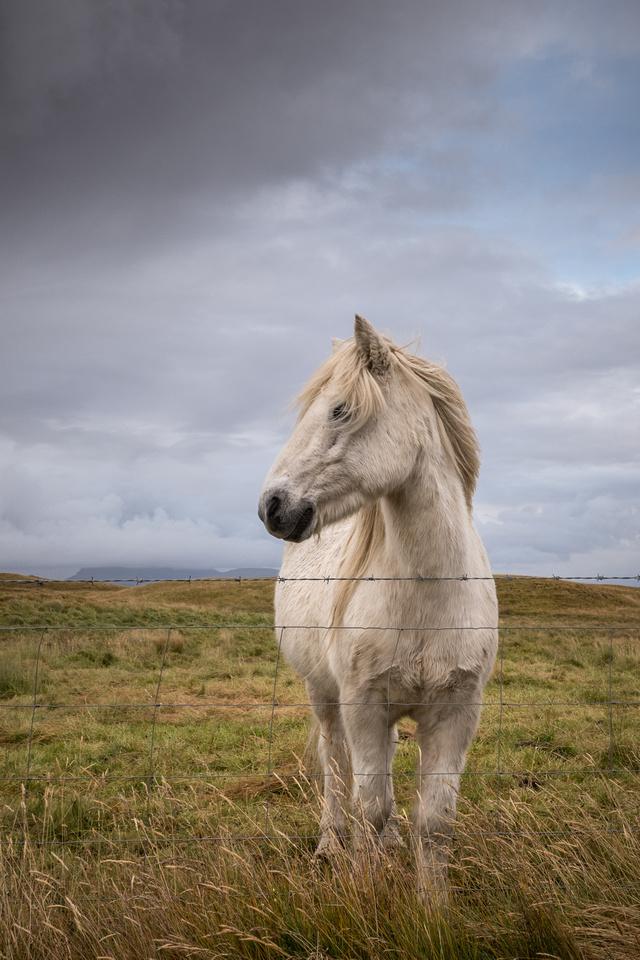 20170921_JMS_Iceland_941