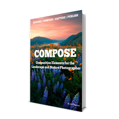 ECCP Compose eBook Cover